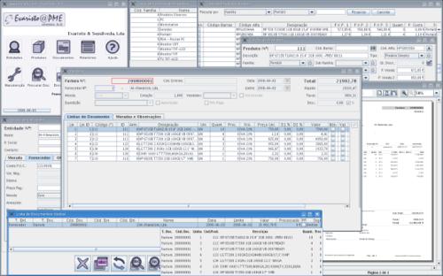 evaristo software gestão